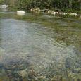 清流日本一の水色 (後志利別川)